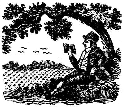 historical reader under tree