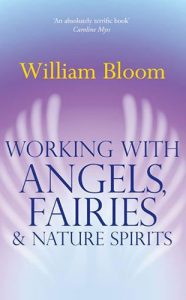 Book Cover Working with Angels by William Bloom
